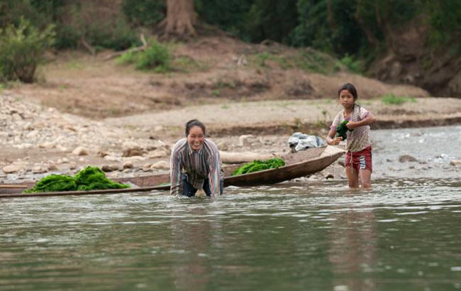 Gathering Kai Pen - River weed!
