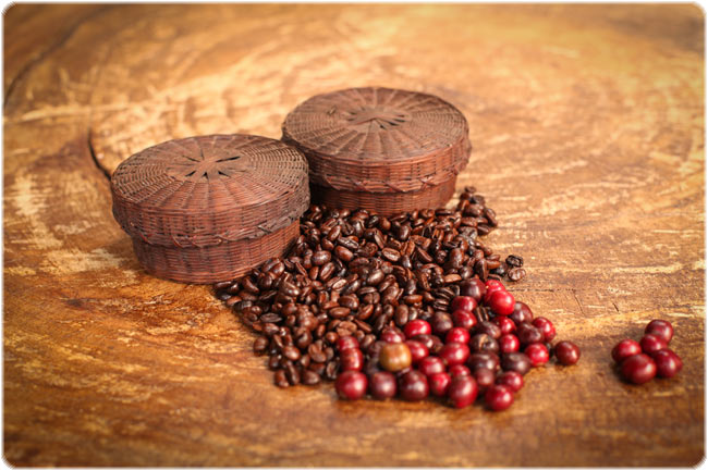Raw coffee berries and roasted coffee beans