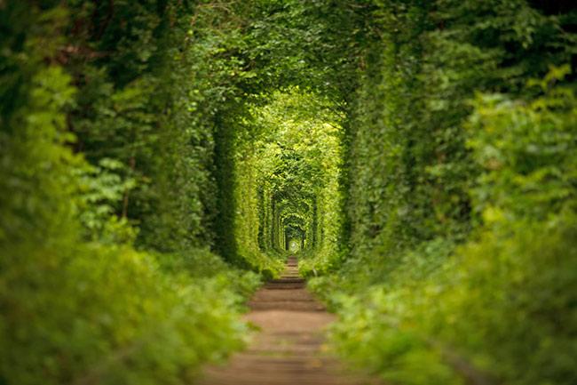 love tunnel ukraine