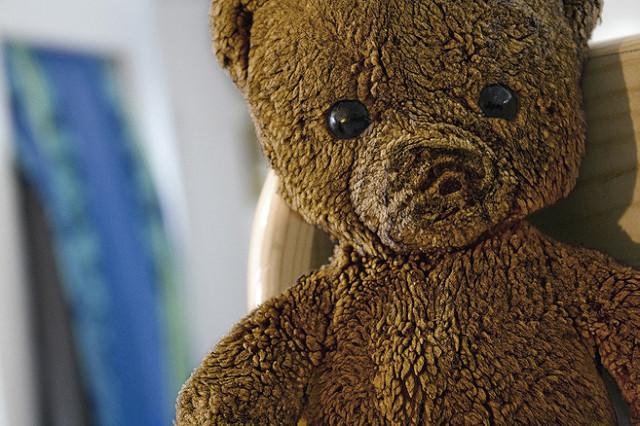 Image by: www.flickr.com/photos/tim-eckert/5493027238