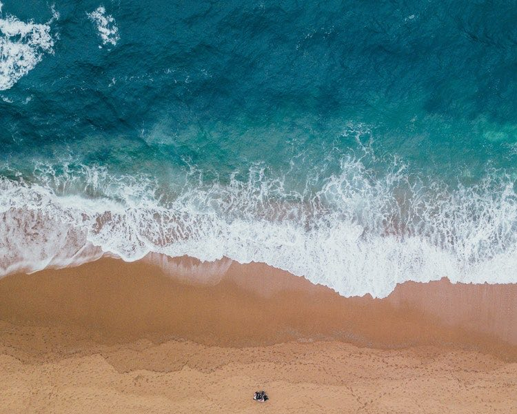 birds-eye-beach